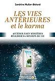 Vies antérieures et le karma : Accéder à ses mystères, réaliser sa mission de vie