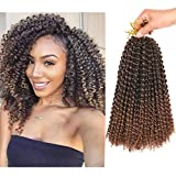 Refined Hair passion twist hair 12inch 6packs/lot Ombre Malibob Jerry Curly...