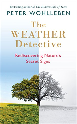 The Weather Watcher: Rediscovering Nature's Secret Signs