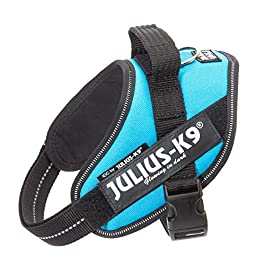 Julius-K9, 16IDC-AM-M, IDC Powerharness, dog harness, Size: S/Mini, Aquamarine