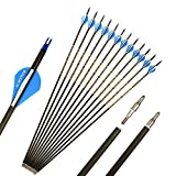 28.5 Inch Arrow 400 Spine Arrow Target Practice Arrow Hunting Arrow Carbon Arrows Compound Bow Recurve Bow Adult Youth Archery Indoor Outdoor Shooting Field Tip