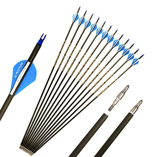 27 Inch Arrow 400 Spine Arrow Target Practice Arrow Hunting Arrow Carbon Arrows Compound Bow Recurve Bow Adult Youth Archery Indoor Outdoor Shooting Field Tip
