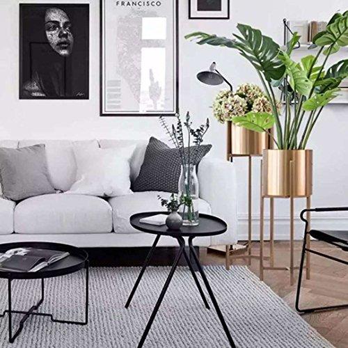 LYQZ Nordic Eisen Blume Ständer Moderne Boden-Stil Goldenen Wohnzimmer Dekoration Blume Rack Haus Pflanze Blumentopf Rahmen Balkon Display Regal (größe : 22 * 22 * 90cm) - 5