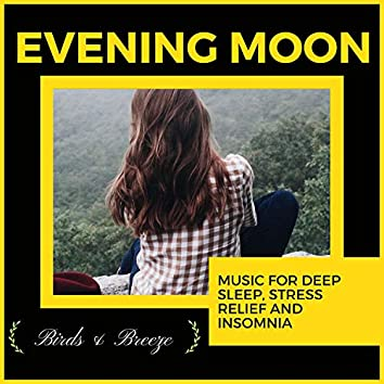 Evening Moon - Music For Deep Sleep, Stress Relief And Insomnia
