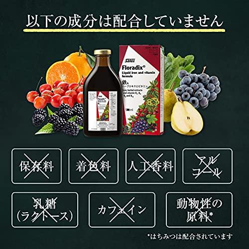 [日本オリジナル配合] Floradix 500ml / フローラディクス 鉄とハーブとビタミン ドイツ 液体鉄分 サプリメント ビタミン B1 B2 B6 B12(JANコード:4004148340918)