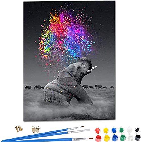 YIMAKJ Pintura por Números, DIY Pintar con Numeros para Adultos y Niños, Pintura en Lienzo para Pared Decoración del Hogar Elefante 40 x 50 cm