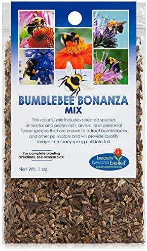 Kansas City Mall Bumblebee Bonanza Wildflower Seeds Wildflow Trust Open-Pollinated Bulk