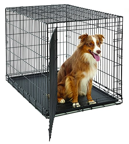 Large Dog Crate | MidWest Life Stages Folding Metal Dog Crate | Divider Panel, Floor Protecting Feet, Leak-Proof Dog Tray | 42L x 28W x 31H Inches, Large Dog