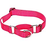 Blueberry Pet Essentials 21 Colors Safety Training Martingale Dog Collar, French Pink, Medium, Heavy Duty Nylon Adjustable Collars for Dogs