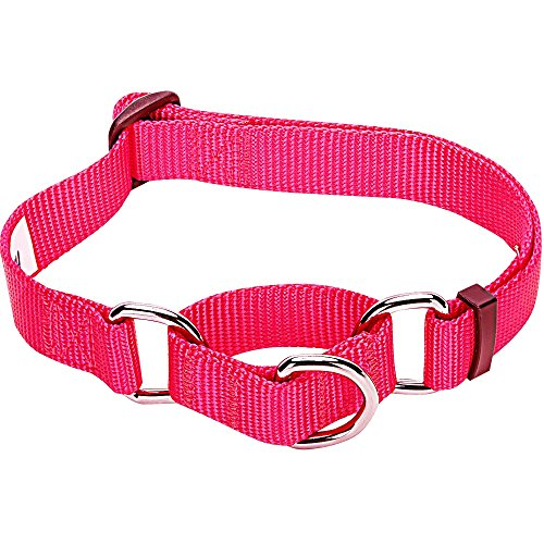Blueberry Pet Essentials Safety Training Martingale Dog Collar, French Pink, Medium, Heavy Duty Nylon Adjustable Collars for Boy and Girl Dogs