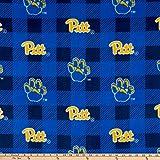 Sykel Enterprises 0669448 NCAA Pittsburgh Panthers Buffalo