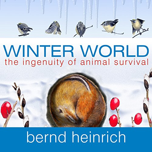 Winter World cover art