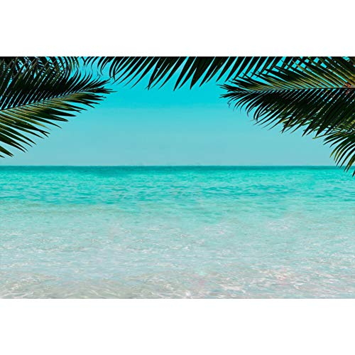 Cassisy 3x2m Vinilo Mar Telon de Fondo Playa de Arena Tropical Vista al mar Cielo Azul Olas Hojas de Palma Fondos para Fotografia Party Infantil Photo Studio Props Photo Booth