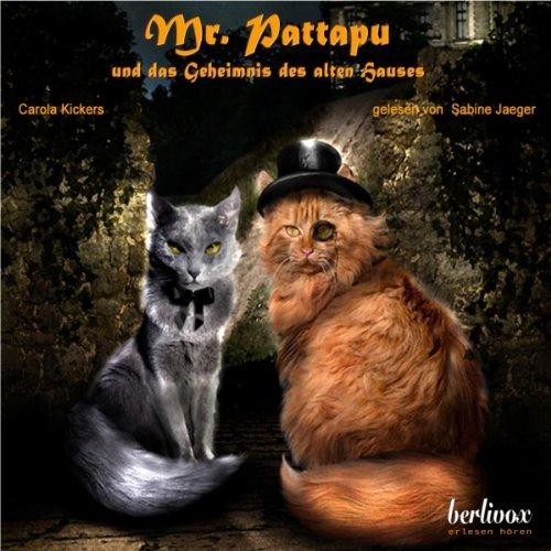 Mr. Pattapu und das Geheimnis des Alten Hauses Titelbild