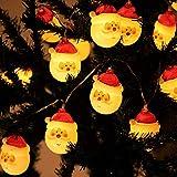 ストリングライト イルミネーションライト スノーマン装飾LEDライト サンタさん 装飾 ledライト 電池式 20球 3m 防水 クリスマス 電飾 屋内 デコレーション クリスマスツリーの飾り 正月 誕生日 祝日 結婚式 学園祭屋外 庭 広場 家装飾ライト (サンタクロース)