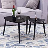 TaoHFE Nesting Table, Coffee Table Set of 2 for Living Room Black
