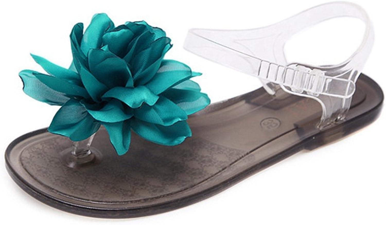 GIY Women's Fancy Flip Flop Jelly Sandals Summer Beach Clear Transparent Flat Bow Jellies Water Sandals