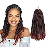 Spring Twist Crochet Braids For Passion Twist Ombre Color Bomb Twist Fluffy Curly Hair Ombre Synthetic Braiding Hair Extensions 4 Packs Sale (10 Inch, T350)