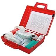 Spilfyter 520250 Specialty Spill Control Standard Mercury Spill Kit Open