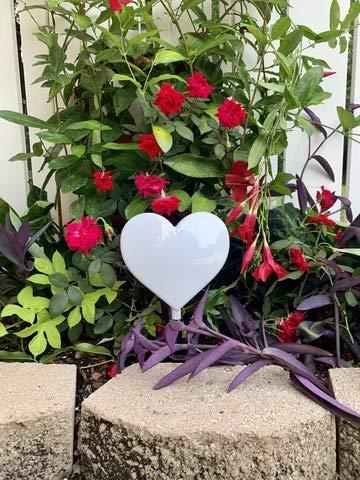 Eternal Light Solar Lighted Color Changing Heart Cemetery Memorial Heartfelt Gift
