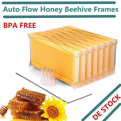 prit 7 nidi produzione automatica di miele, casetta d'api, bacchetta per apicoltura Hive