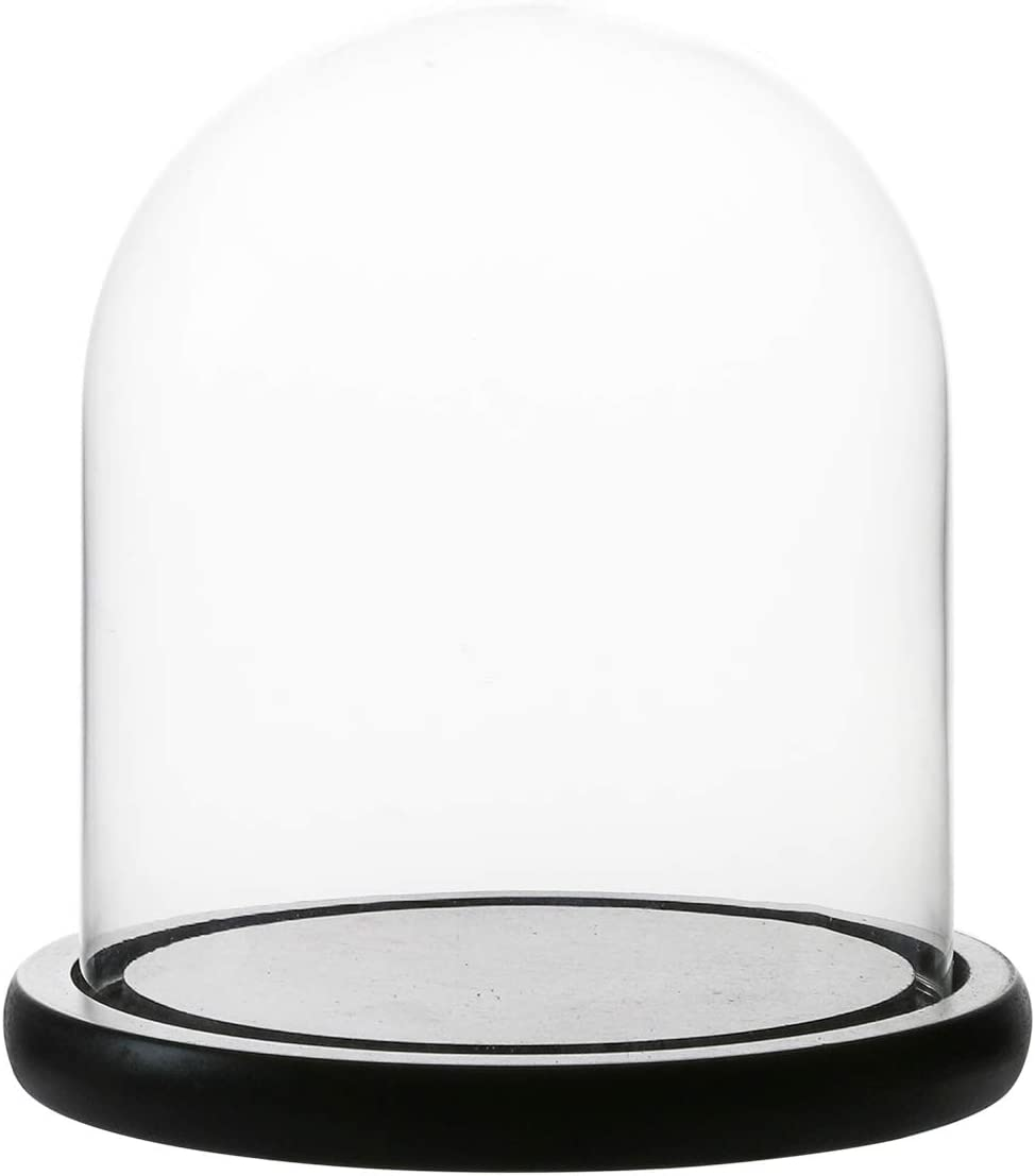 Whole Housewares Decorative Clear Glass Dome/Tabletop Centerpiece Cloche Bell Jar Display Case with Black MDF Base, 5.7
