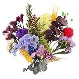 Exceart - Scatola di fiori di foglie vere, pressate secche, reali, con foglie di fiori pressate colorate
