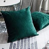 Topfinel Samt Kissenbeüge mit Reißverschluss einfärbig für Autos Wohnzimmer Schlafzimmer Sofa...