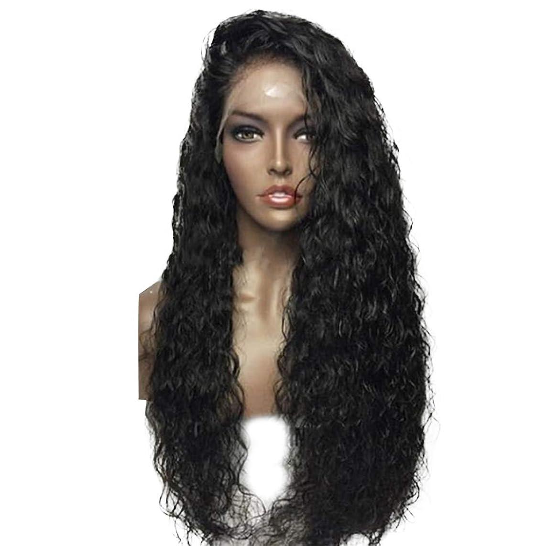 竜巻自己尊重パニック黒人女性のための黒のかつら、長い黒のかつらピンクのレースのかつらスモールウェーブヘアウィッグファッションナチュラルヘアとして毎日自然なパーティーコスプレコスチュームウィッグ
