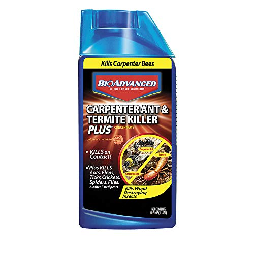 BioAdvanced 700310A Ant & Termite Killer Plus Carpenter Bee Pesticide, 40-Ounce, Concentrate