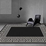 Aabbcdf Large Area Rug Living Room Bedroom Rugs Fashion Chinese Style Geometry Black White Border Carpet Soft Touch Designer Carpet Home Floor Mats,Black,160x230cm(63x91inch)
