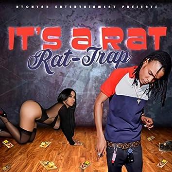 It's A Rat - Single