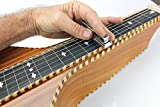 Lap Steel For The Money