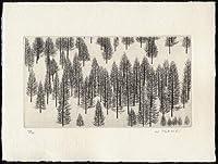 冬の林・2004銅版画・エッチング、作品のみ コレクション
