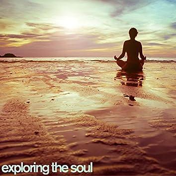 Exploring the Soul