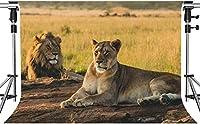 動物のパーティーの写真のためのHDステップライオンの背景草地の背景のライオン家族7x5ftHXMT228