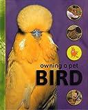 Owning a Pet Bird