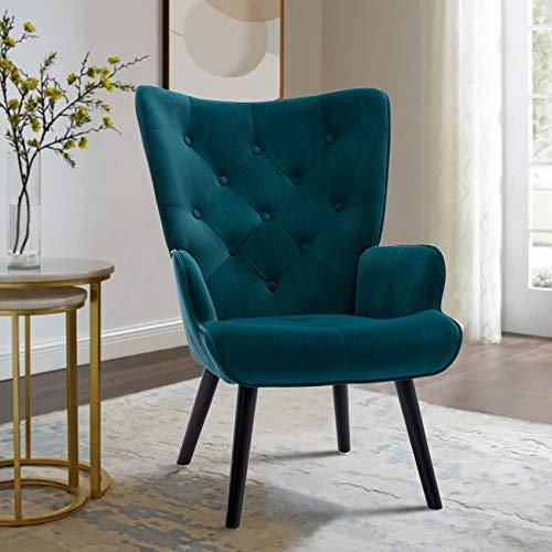 Dolonm Velvet Accent Chair Modern Wingback