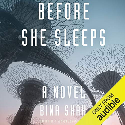 Before She Sleeps audiobook cover art