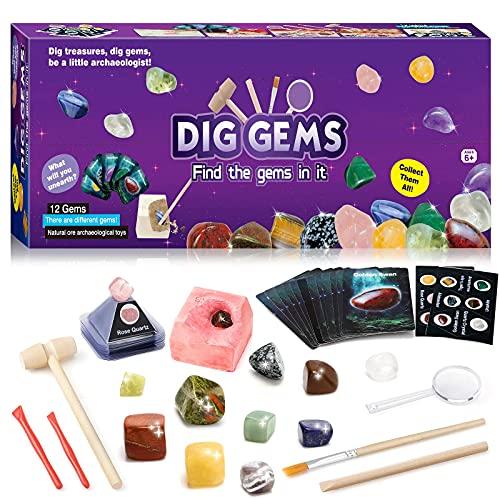 Sillbird Mineralien Ausgrabungsset für Kinder ab 7 Jahren, 12 Edelstein Ausgraben Spielzeug Experimentierset, Mineralogie Ausgraben Geschenk für Archäologie Kinder ab 6 7 8 9 10 Jahren