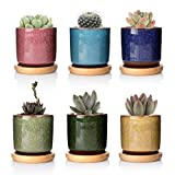 T4U Plant Containers & Accessories