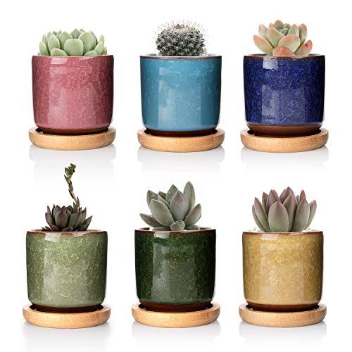 T4U 6.3cm Cerámico Grieta de Hielo Zisha Elevado Serie Suculento Maceta de Cactus Flor Macetas Envase Plantas Azul Claro con Bandejas de Bambú Todo Color Conjunto de 6