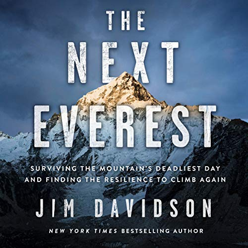 The Next Everest Audiobook By Jim Davidson cover art