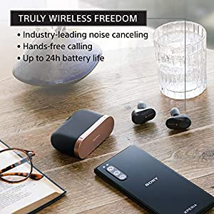 Sony WF-1000XM3/B Industry Leading Noise Canceling Truly Wireless Headphones with Free $20 Amazon Gift Card