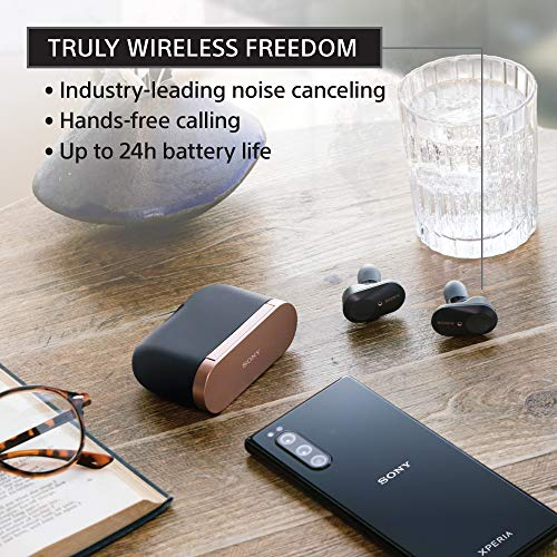 Sony WF-1000XM3 Industry Leading Noise Canceling Truly Wireless Earbuds Headset/Headphones with Alexa Voice Control And Mic For Phone Call, Silver