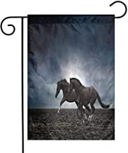 Mannwarehouse Horses Animal Garden Flag Couple Horses Running on The Plowed Field in Stormy Dark Weather Sky Equestrian Concept Decorative Flags for Garden Yard Lawn W12 x L18 Fabric