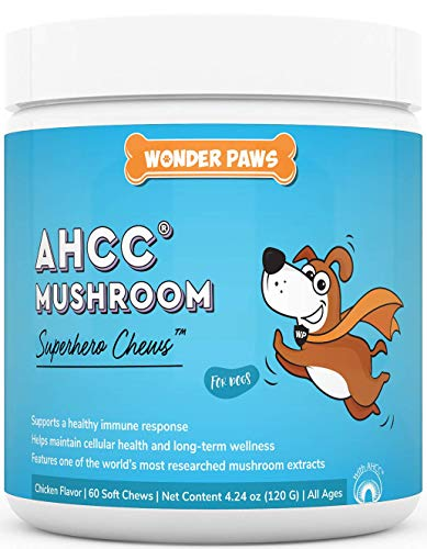 Top 10 best selling list for best ahcc supplement for cats
