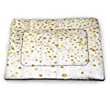 prunushome Crate Bed Pet Mat Abstract Decor Rug for Dogs & Cats Bunch of Shiny Stars Backdrop Inspirational Lucky Lifestyle Textured Design for Kennels, Crates and Beds- Pets Gold Yellow (31'x21')