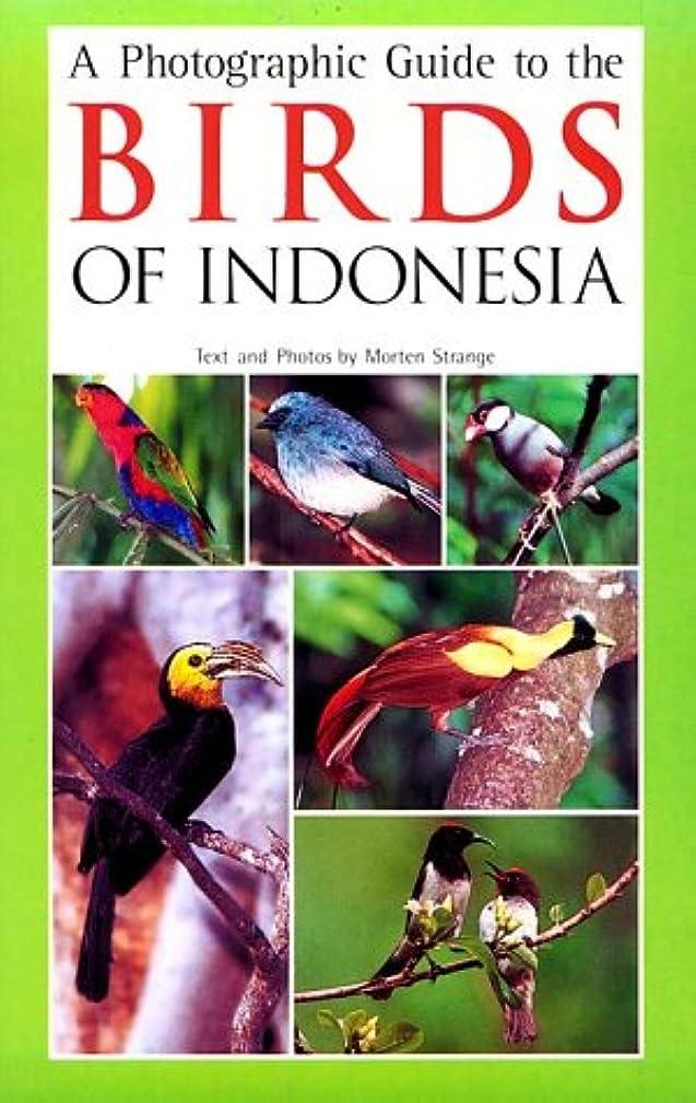 実行何ウェイドBirds of Indonesia