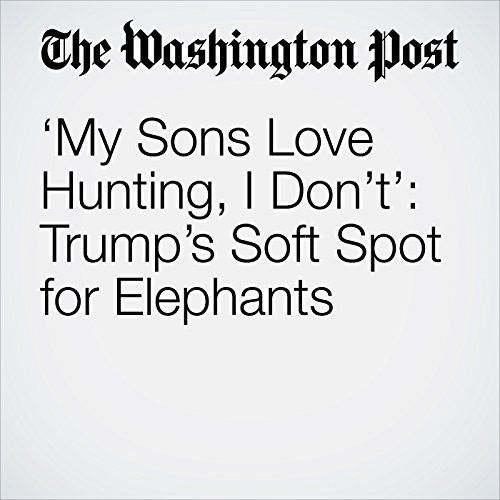 'My Sons Love Hunting, I Don't': Trump's Soft Spot for Elephants copertina